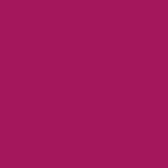 AMSTERDAM AKRİLİK BOYA 120 ML 567 PERMANENT RED VİOLET