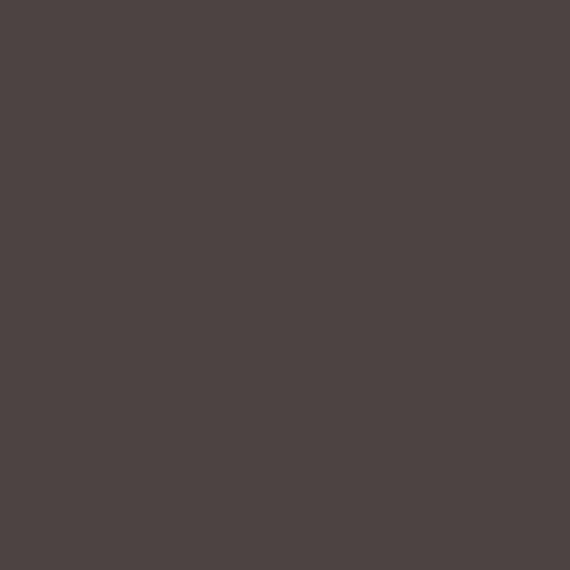AMSTERDAM AKRİLİK BOYA 120 ML 408 RAW UMBER