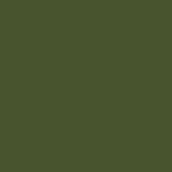 AMSTERDAM AKRİLİK BOYA 120 ML 622 OLİVE GREEN DEEP