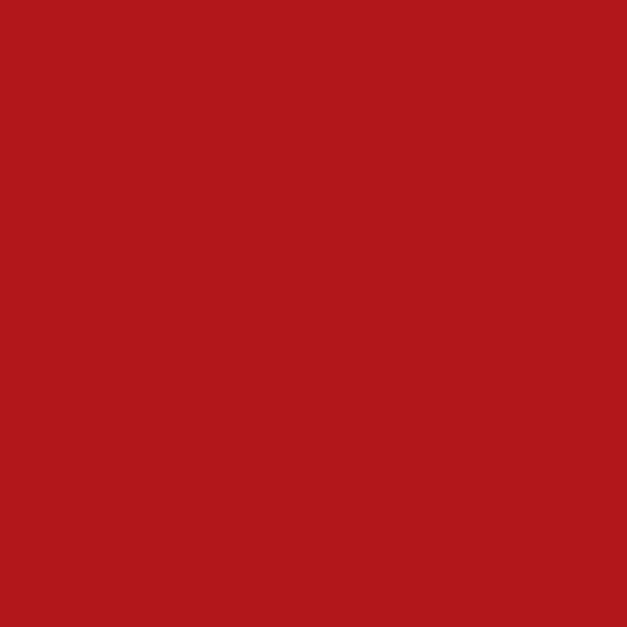 AMSTERDAM AKRİLİK BOYA 120 ML 399 NAPHTHOL RED DEEP