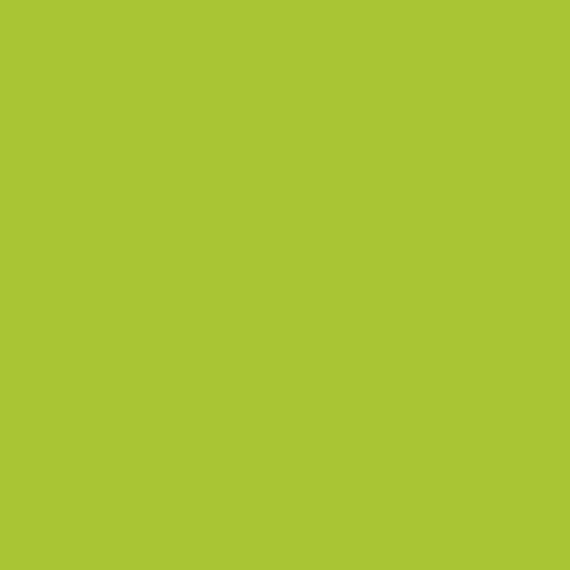 AMSTERDAM AKRİLİK BOYA 120 ML 243 GREENİSH YELLOW